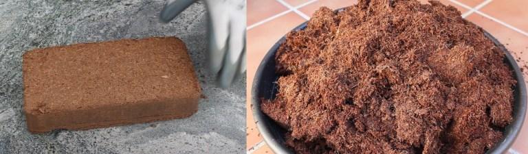 Fibra de coco antes y después de hidratarse